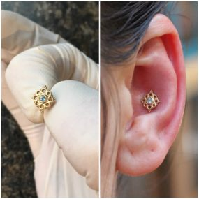 Conch Piercing with 14k gold from BVLA done at Laughing Buddha Tattoo & Body Piercing Seattle, WA Capitol Hill