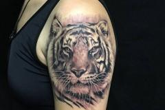 Tattoos by Dan