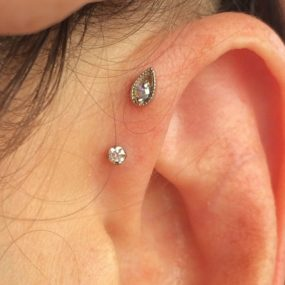 Forward Helix Piercings with 14k gold from BVLA piercing by Colin O at Laughing Buddha Seattle, WA Capitol Hill